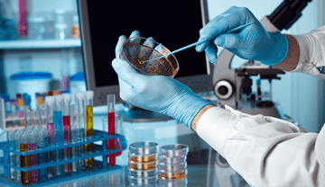 Technology Biotechnology Pharmaceutical Process/Chemicals